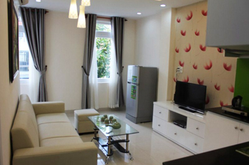 New serviced apartment for rent in Phu My Hung District 7 .