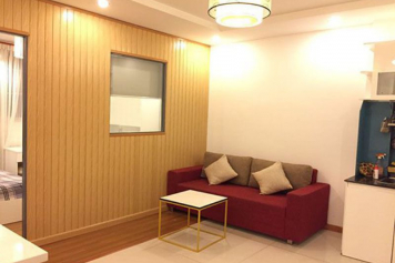 Serviced apartment for lease in Saigon city, Duong Ba Trac street, district 8.