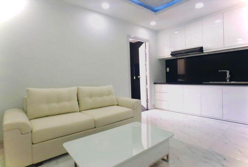 SGrenting Homes serviced apartment for rent in Binh Thanh District 11
