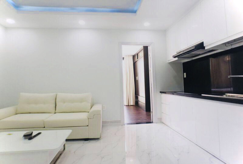 SGrenting Homes serviced apartment for rent in Binh Thanh District 7